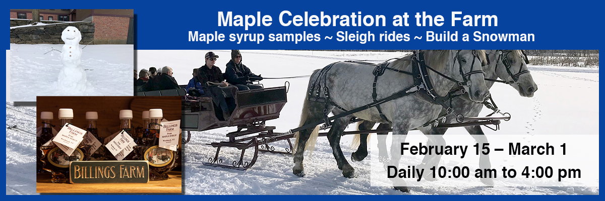 billings farm winter maple syrup celebration
