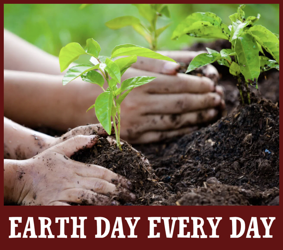 earth day every day billings farm woodstock vt
