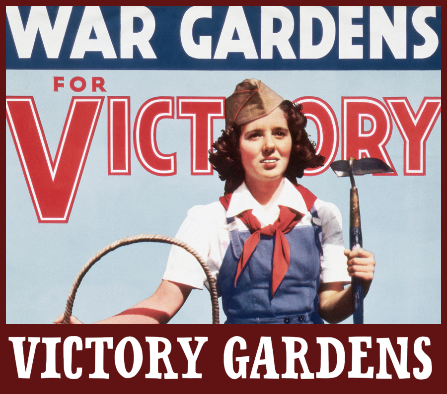 victory gardens at billings farm and museum