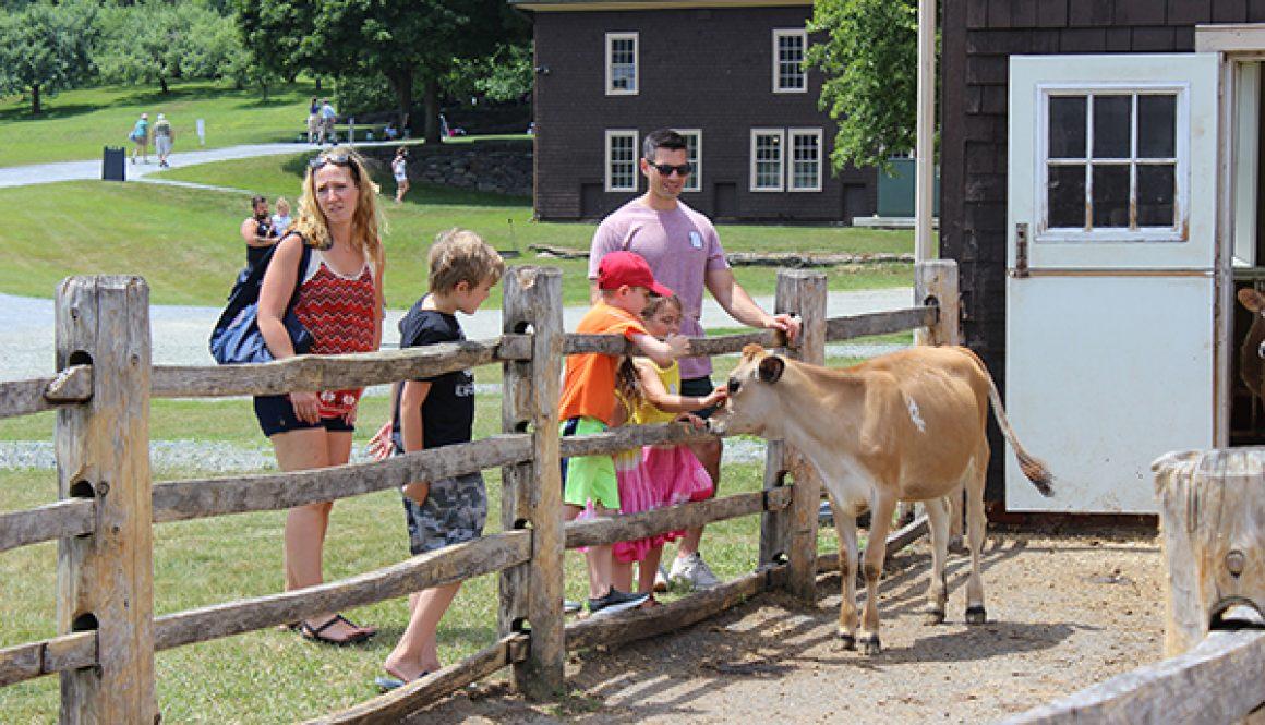 Dairy Celb 2021-visitors