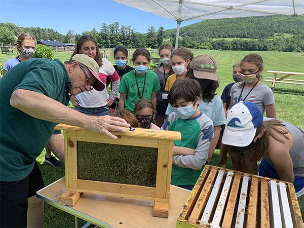 Farm Discovery Camp campers watch a beekeeping demonstration