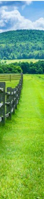 BFM fences
