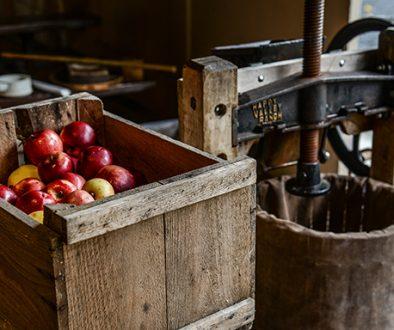 apples-cider